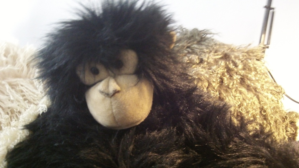 I like the monkey