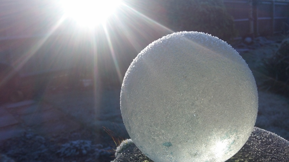 2014: The crystal ball says the sun will shine