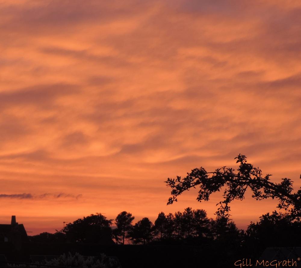 2014 05 21 Sunset from Loft jpg sig