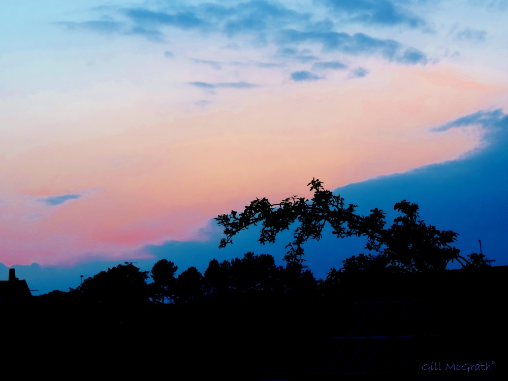 2014 05 31 9.30pm  Pink and Blue jpg sig
