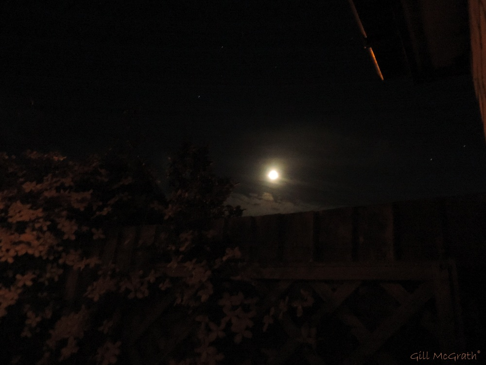 2014  06 05 at Moon over the fence 23.48