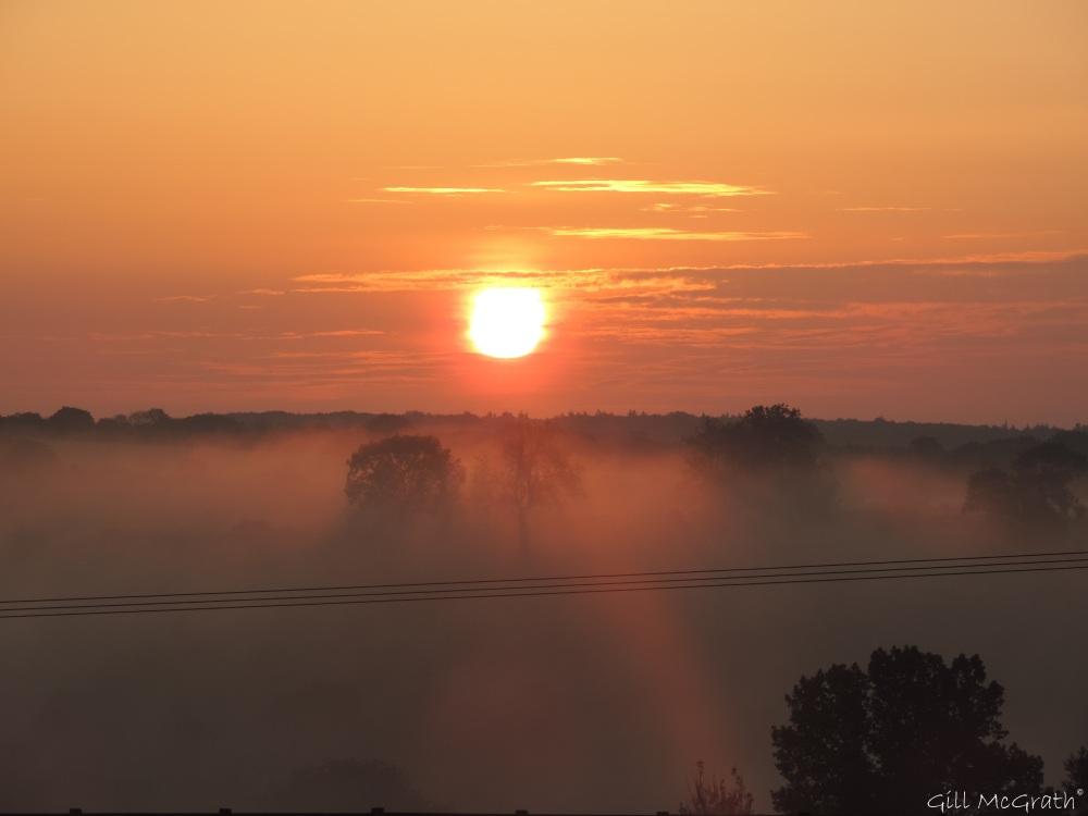 2014 06 01 4.am  sunrise jpg sig