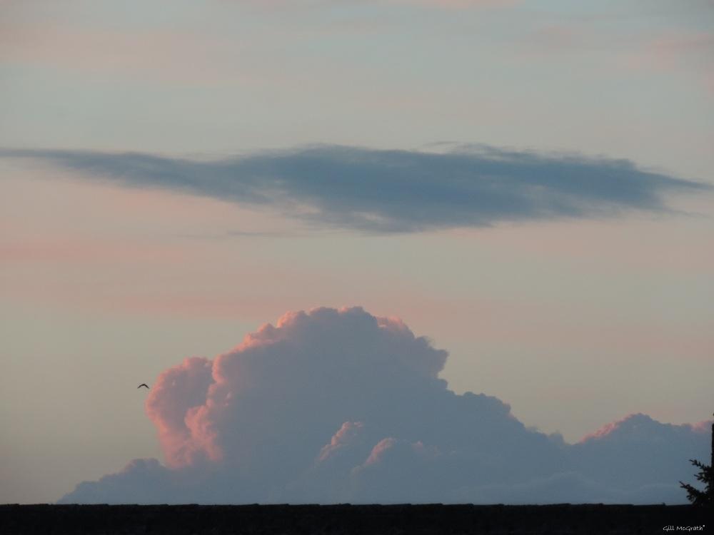 2014 06 07 Twin Peaks 3  orpink mountain jpg sig