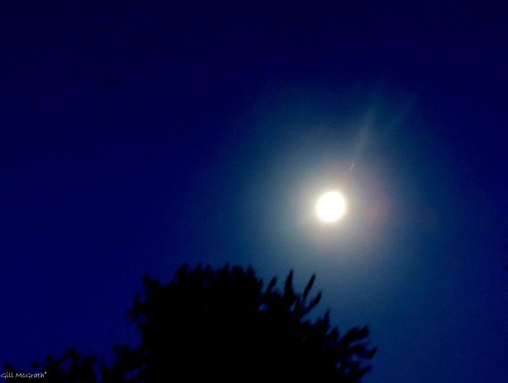2014 06 10 Moon. 11.00pm jpg sig