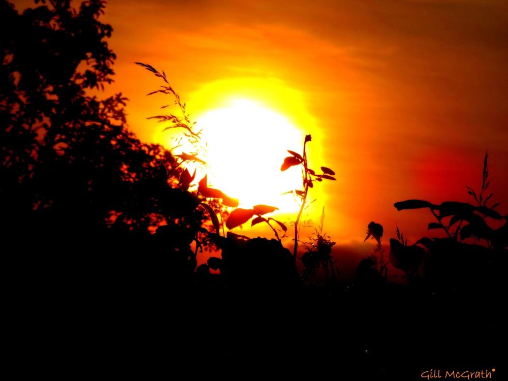 2014 06 19 Sunburn jpg sig