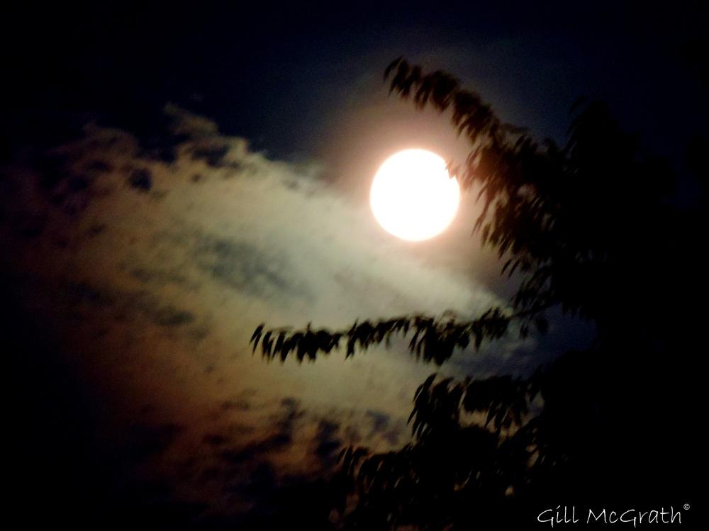 2014 07 11 Milky moon 10 30pm jpg sig