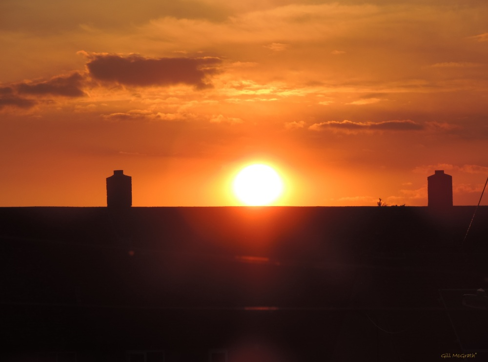 2014 07 28 Sun falling through down around between.....jpg sig