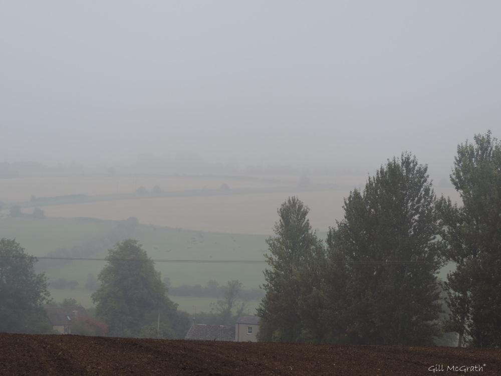 2014 09 15  mist sheild 3 jpg sig