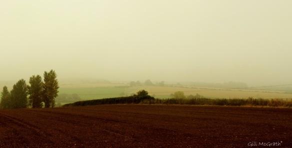 2014 09 15 ploughed misty no particular line jpg sig