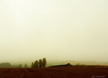 2014 09 15 Ploughed. veiled. no lines in the sky jpg sig