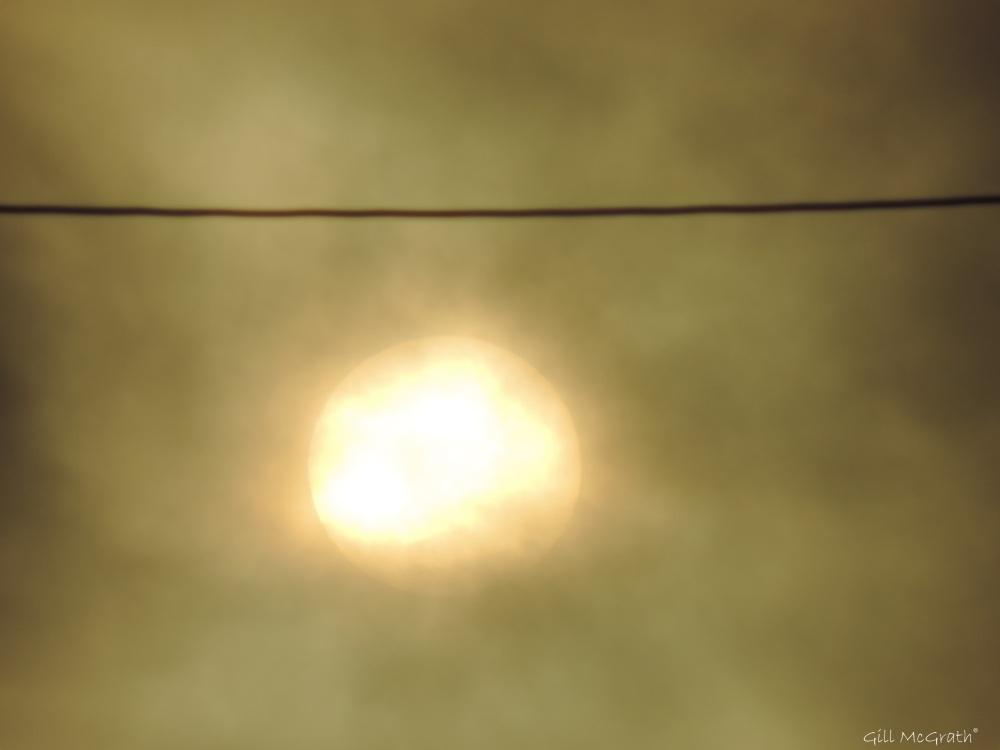 2014 10 20 sun at 8 jpg  sig