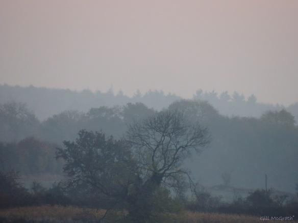 2014 10 28 mist on the wires jpg sig