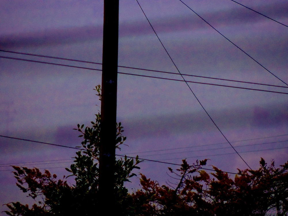 2014 11 21 a veil of purple mist jpg sig