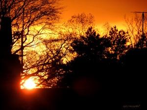 2014 11 28 5th November sunset jpg sig