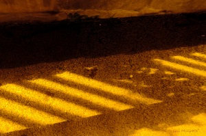 2014 12 16  yellow light brown  shadows on  grey asphelt   jpg sig