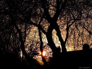 2014 12 24  first sun  jpg sig