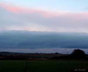 2014 12 27 pink and blue fluff over green this evening jpg sig