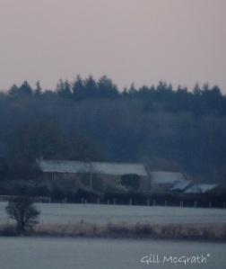 2014 12 29 morning frost soft light jpg sig