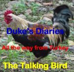 Dukes Diary Front Page