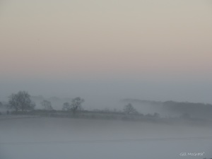 1 2015 01 04   DSCN9381 white mist jpg sig
