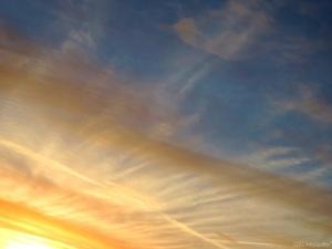 2015 01 02 Oyster shell sky jpg sig