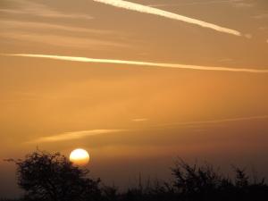 2015 01 04  sun up  road side  8.31am  jpg sig