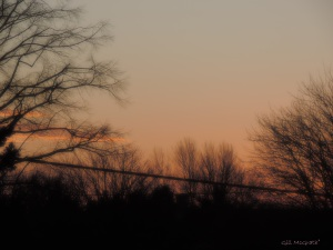 2015 01 06 other side  sunset jpg sig