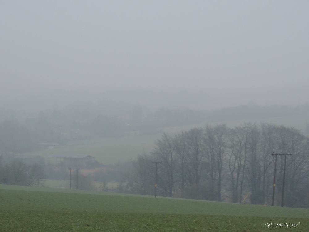 2015 01 21 rain veiling the view jpg sig