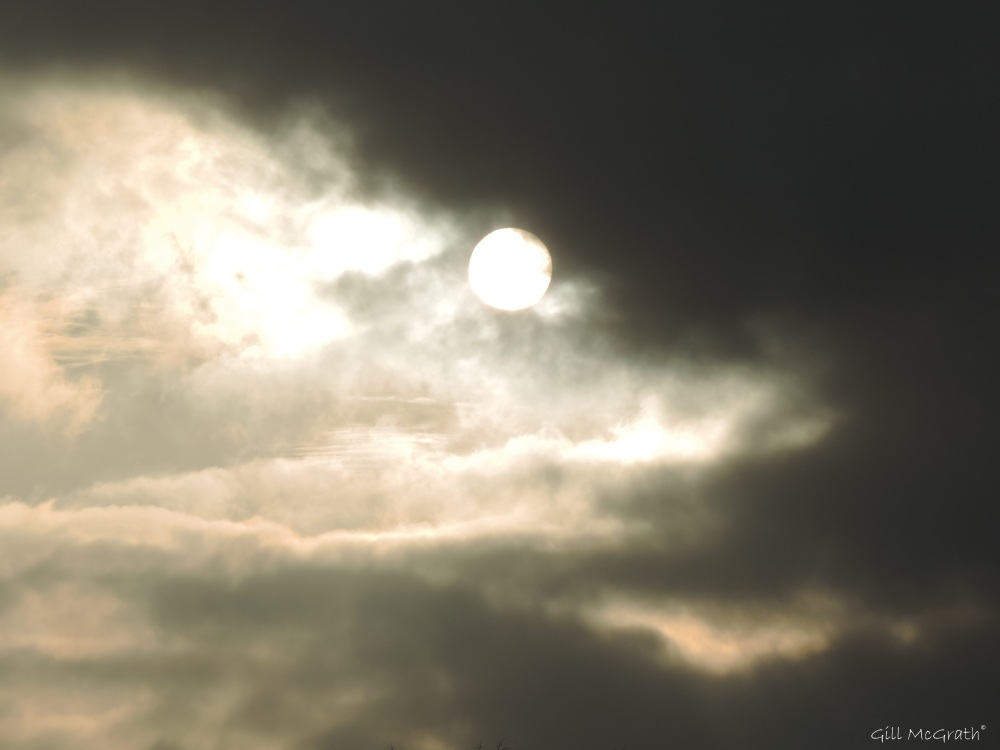 2015 01 22 at 3.18 pm afternoon  sun down jpg sig