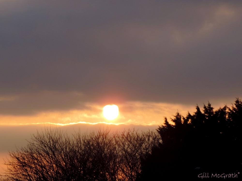 2015 01 22 sunset 4.03 pm jpg sig