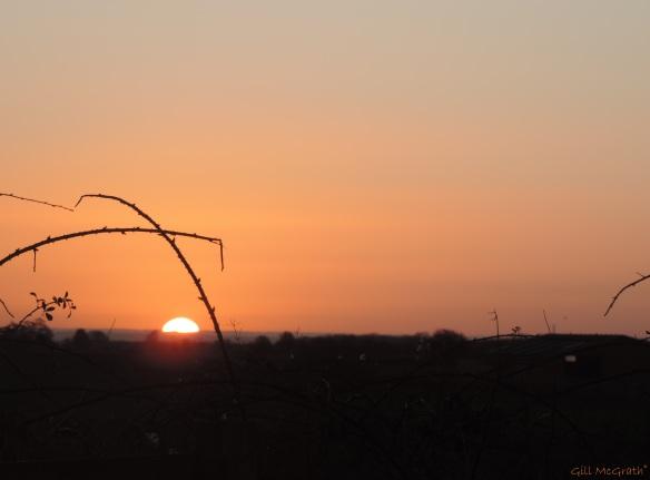 2015 01 24 first shot of the sun jpg sig