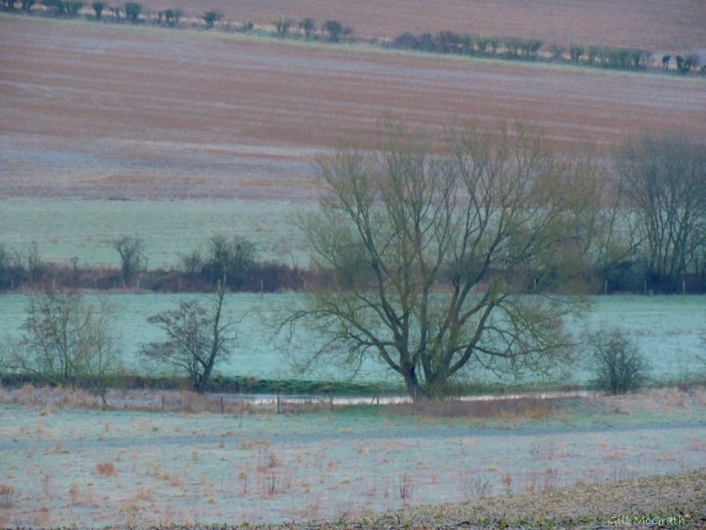 2015 01 25 brown green amillion colours jpg sig
