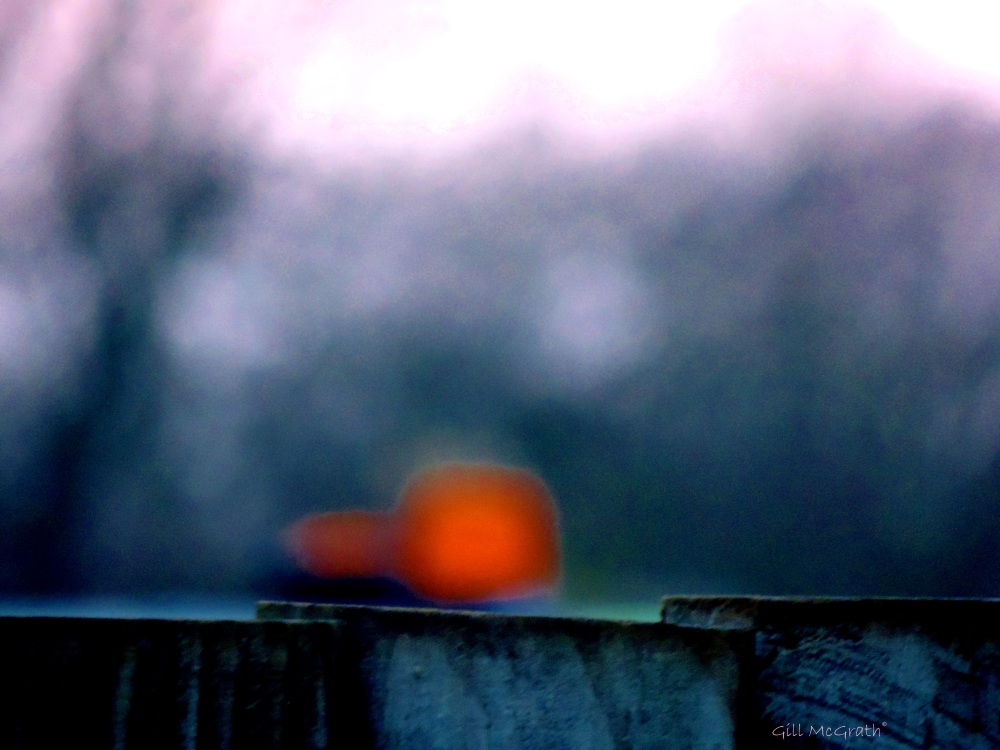 2015 01 28  landscape  light rain obscura