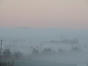 3 2015 01 04  DSCN9384 jpg sig white mist