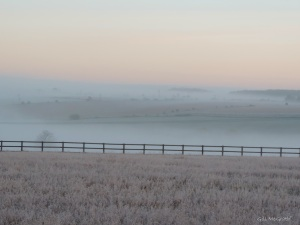 5 2015 01 04 DSCN9396 jpg sig white mist