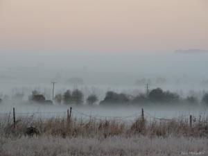 6 2015 01 04   DSCN9404 jpg sig white mist