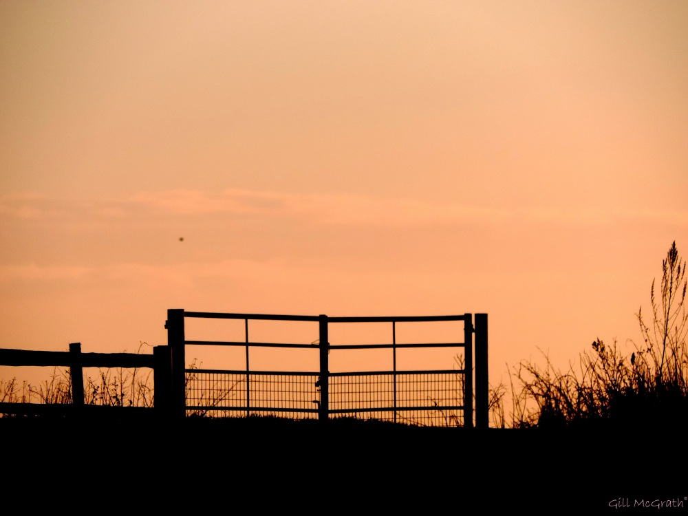 2015 01 29 gate to the fields from the road keep out jpg sig