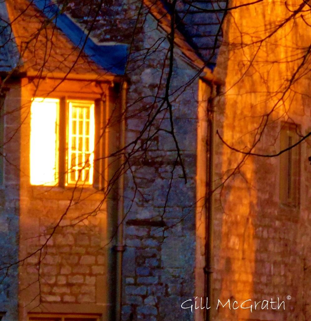 2015 01 29 window in the sun jpg sig