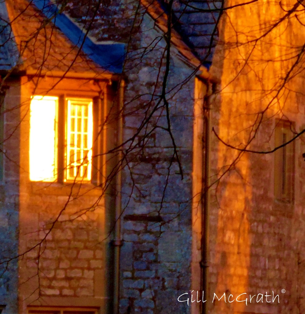 2015 01 29 window in the sun jpg sig