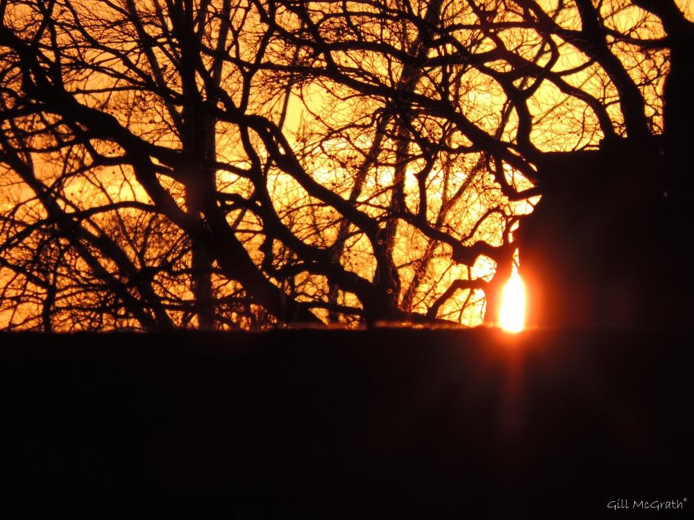 2015 02 03 4.45 sun down 1 jpg sig