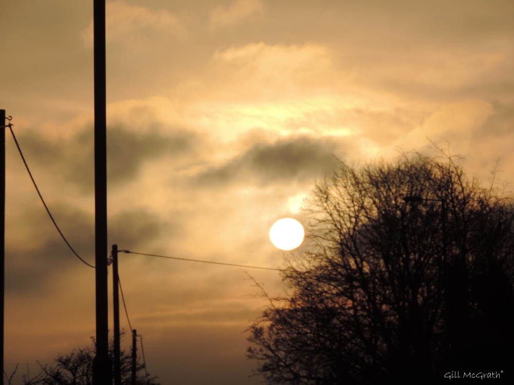 2015 02 04 sun out road 816 jpg sig
