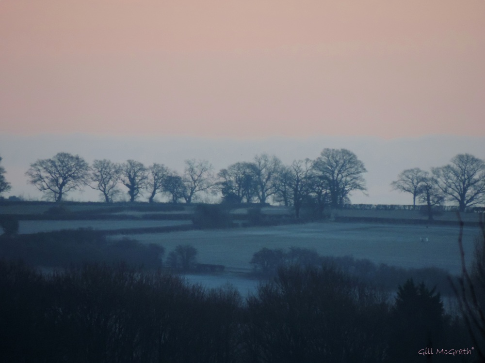 2015 02 06 morning sequence pink 1 747jpg sig