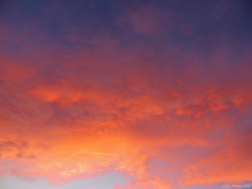 2015 02 16 evening 5.34 jpg sig
