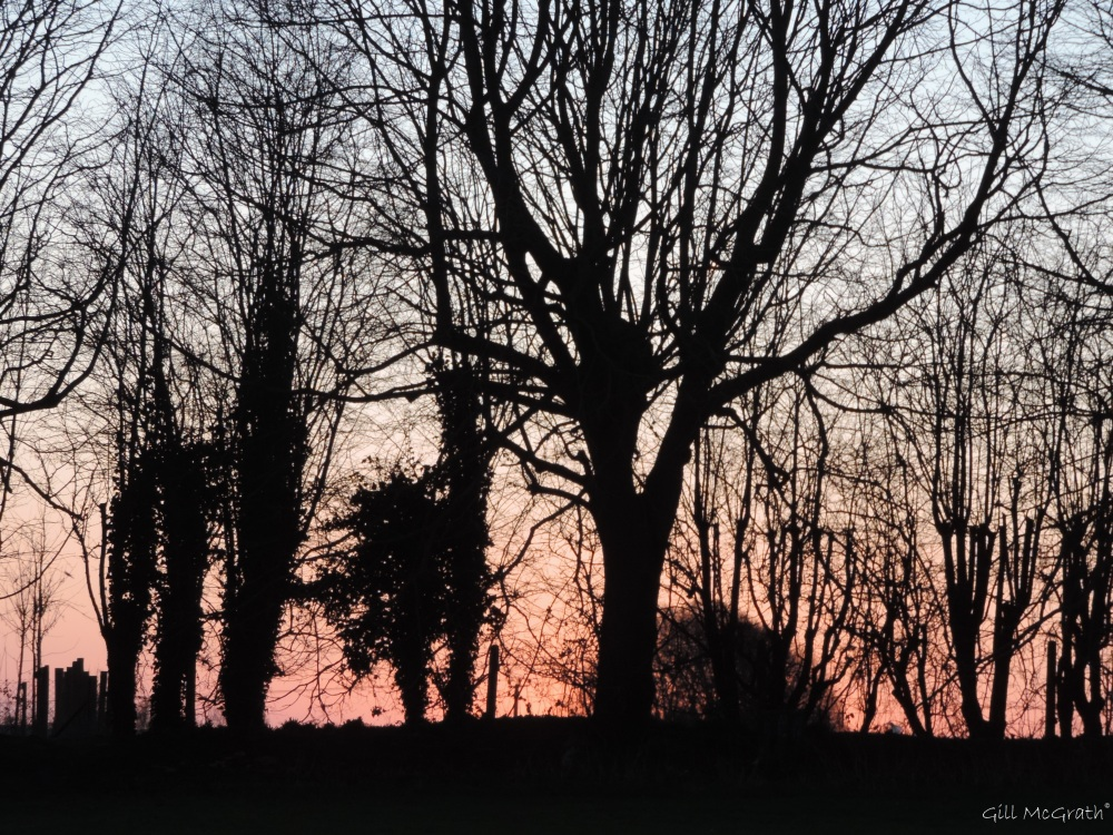 2015 02 17  7 22 predawn  and then the morning came  first jpg sig