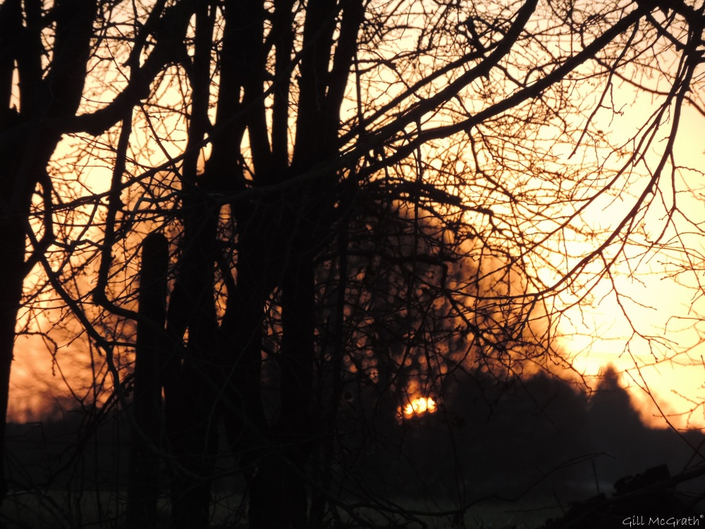 2015 02 17 7 25  and then the morning came  1 jpg sig