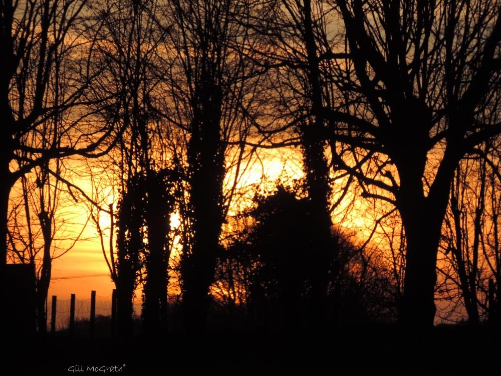 2015 02 18 725 sunrise jpg sig