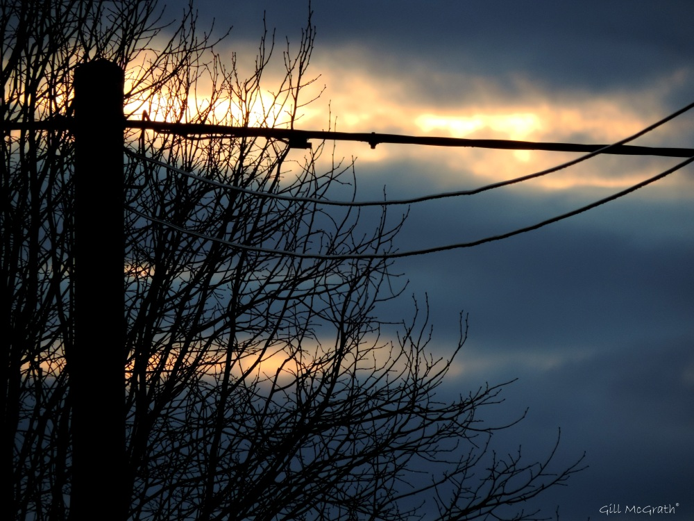 2015 02 21 3 pigeon post where the sun came up jpg sig