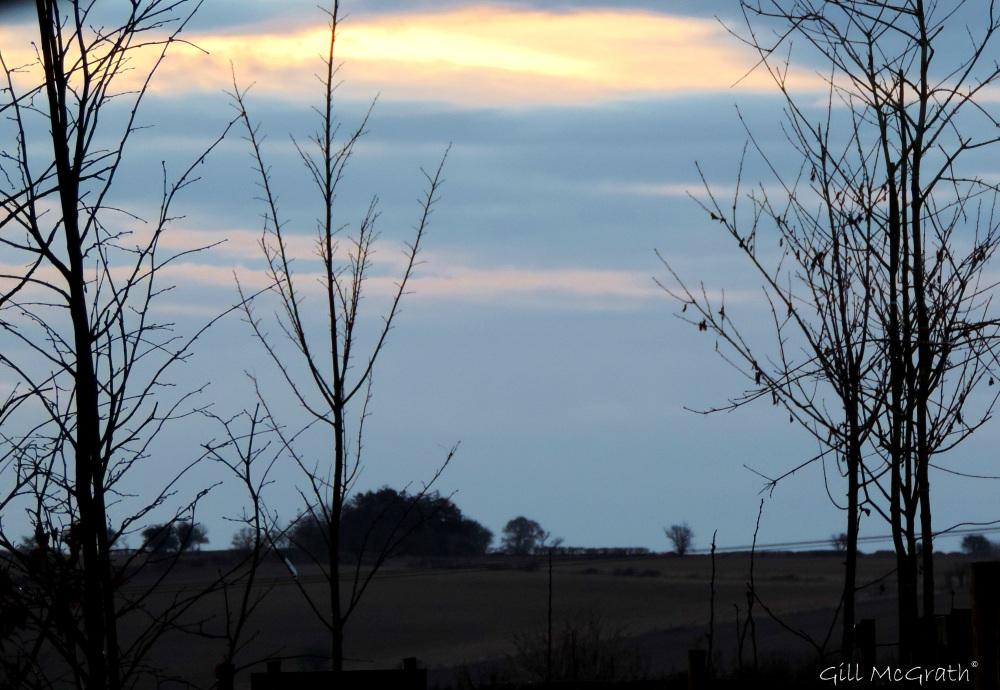 2015 02 21 4 Pigeon post view jpg sig