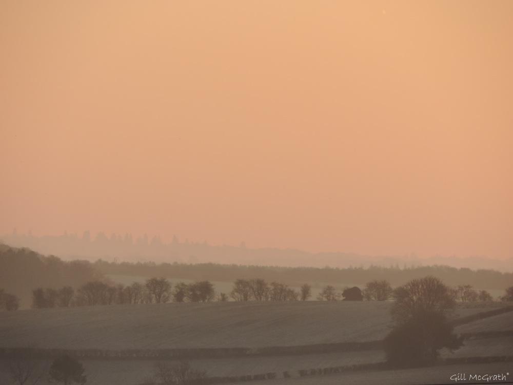 2015 02 22 721 pink valley  jpg sig