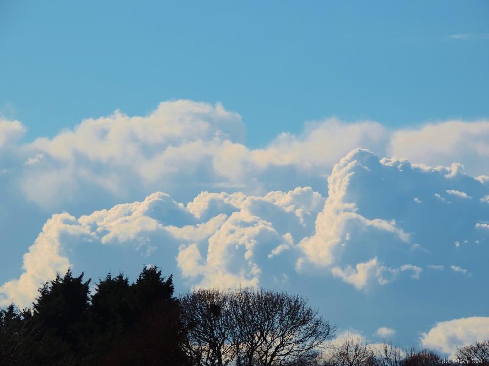 201 03 24 sky afternoon jpg sig